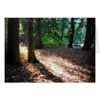 Trayectoria en la sol y las sombras de maderas tarjeta de felicitación