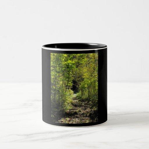 Trayectoria en la taza de maderas