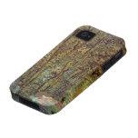 Trayectoria en las maderas, impresionismo de Van iPhone 4/4S Carcasas