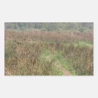 Trayectoria estrecha a través de la hierba alta pegatina rectangular