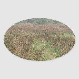 Trayectoria estrecha a través de la hierba alta pegatina ovalada