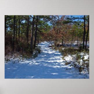Trayectoria nevada del arbolado en invierno posters