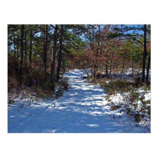 Trayectoria nevada del arbolado en invierno postales