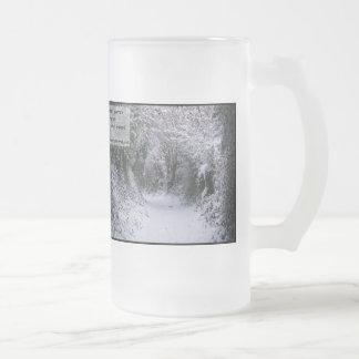 Trayectoria Nevado - cita Taza