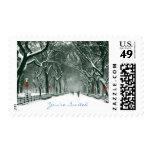 Trayectoria Nevado del Central Park invitada Envio