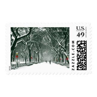 Trayectoria Nevado del Central Park Franqueo