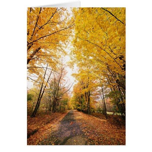 Trayectoria que camina del follaje de otoño tarjeta de felicitación