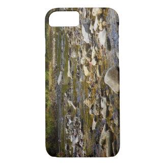 Trayectoria rocosa funda iPhone 7