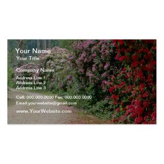 Trayectoria roja de las flores del rododendro tarjetas de visita
