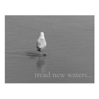 Tread new waters postcard