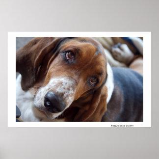 Treasure Island Watch Dog Posters