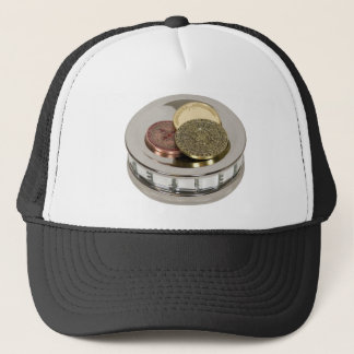 TreasureMirror110409 copy Trucker Hat