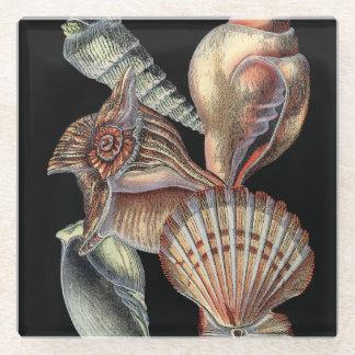 Treasures of the Sea Glass Coaster