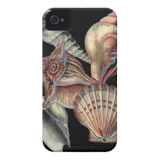 Treasures of the Sea iPhone 4 Case-Mate Case
