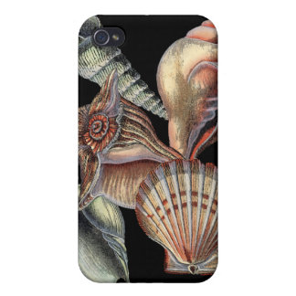 Treasures of the Sea iPhone 4 Cover