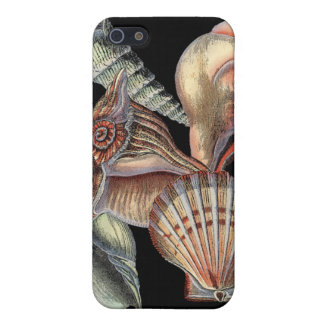Treasures of the Sea iPhone SE/5/5s Case
