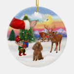 Treat for a Apricot Poodle (Toy) Ornament