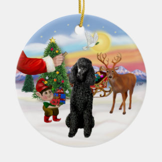 Treat for a black Standard Poodle Double-Sided Ceramic Round Christmas Ornament