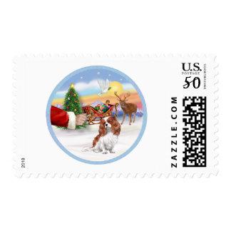 Treat for a Blenheim Cavalier Postage