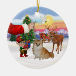 Treat for a Pomeranian Christmas Ornaments