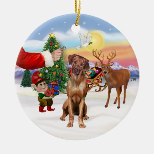 Treat for a Rhodesian Ridgeback Christmas Tree Ornaments