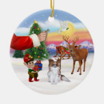 Treat for a Sable Papillon Christmas Tree Ornaments