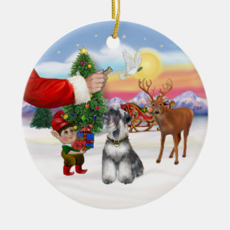 Treat for a Schnauzer (natural ears) Christmas Ornaments