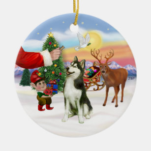 treat for a siberian husky 3 ceramic ornament - Husky Christmas Decoration