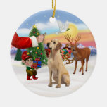 Treat for a Yellow Labrador Ornaments