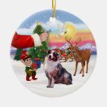 Treat for an Australian Shepherd (merle) Christmas Tree Ornaments