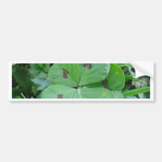 Trébol afortunado salvaje real de 5 hojas pegatina de parachoque