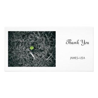 trébol afortunado tarjetas fotográficas personalizadas