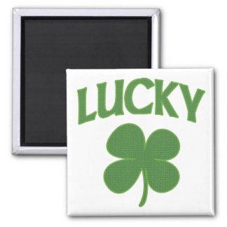 Trébol irlandés afortunado imán