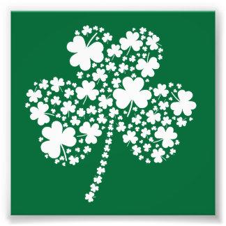 Trébol irlandés del trébol del día de St Patrick Fotografías