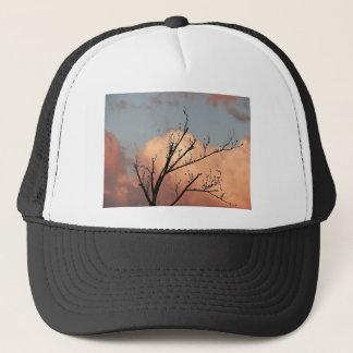 Trebranches full of black birds trucker hat