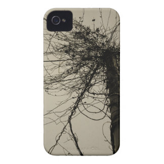 tree-01 iPhone 4 Case-Mate cases