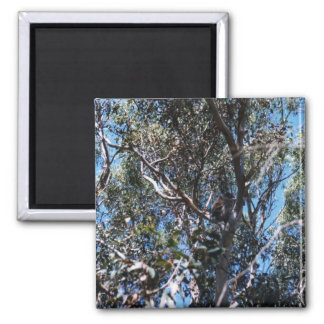 Tree 2 Inch Square Magnet