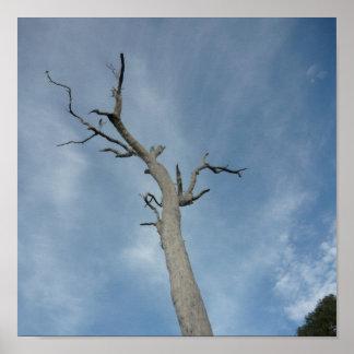 Tree 3 print