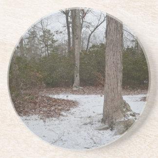 Tree & a Path Coaster