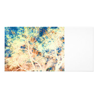 Tree abstract orange and blue background photo card