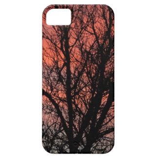 Tree against Red Sky iPhone 5 Cover