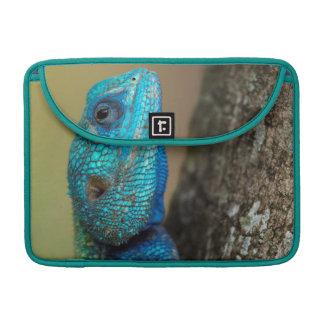 Tree Agama (Acanthoceros atricollis), Ndumo Game MacBook Pro Sleeve