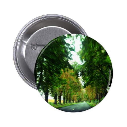 Tree alley in Hungary Pinback Button