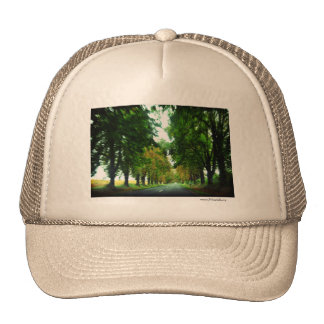 Tree alley in Hungary Trucker Hat