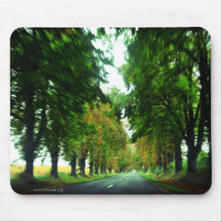 Tree alley in Hungary Mouse Pad