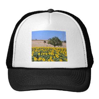 Tree among sunflowers trucker hat