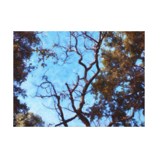 Tree and blue sky canvas print