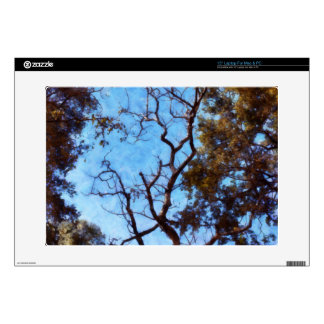 """Tree and blue sky decal for 15"""" laptop"""