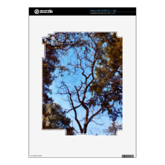 Tree and blue sky decals for iPad 2