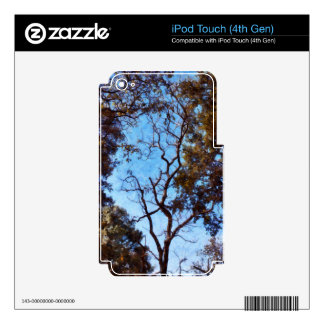 Tree and blue sky decals for iPod touch 4G